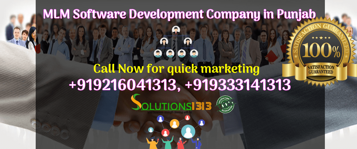 MLM Software Development Company in Punjab
