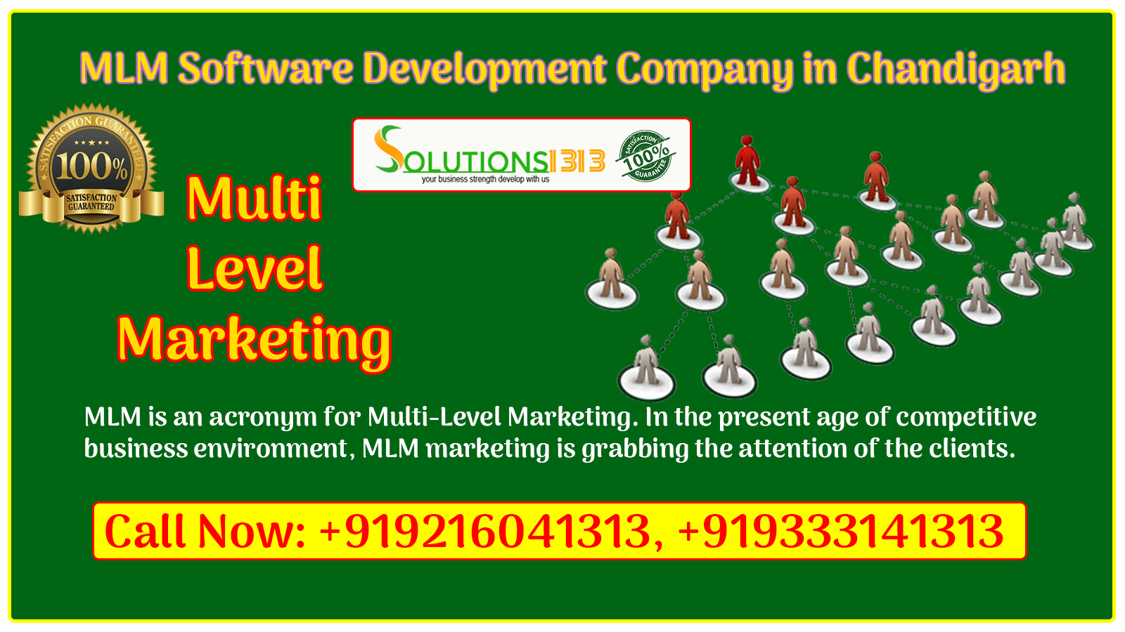 MLM Software Development Company in Chandigarh