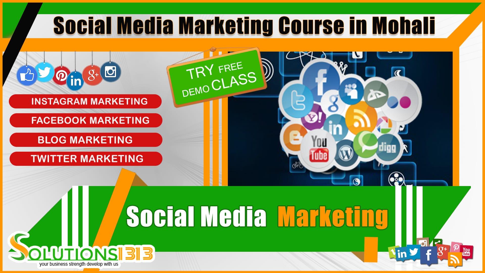 Social Media Marketing Course in Mohali